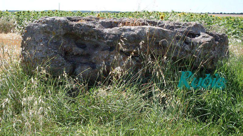 Dolmen de Beloire ou de Beauregard, Meschers-sur-Gironde (17)