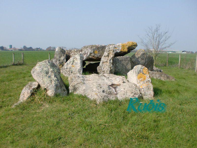 Dolmen du Grand Bouillac ou Pallet de Gargantua, Saint Vincent sur Jard