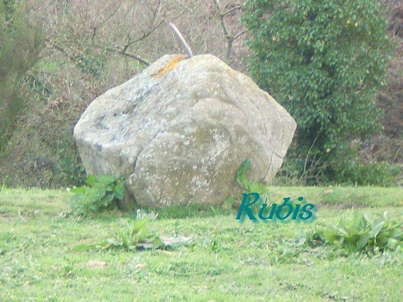 Pierres à cupules de la Millassière, Mauléon