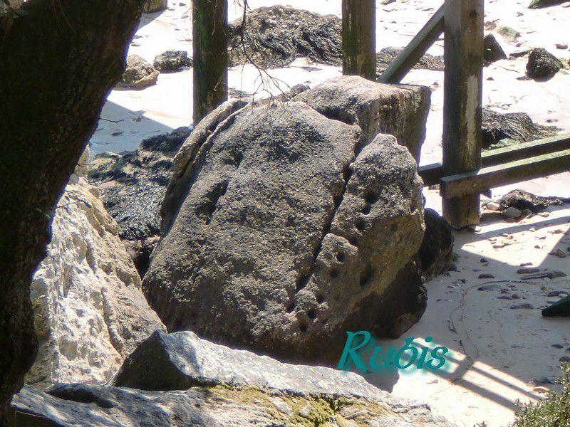Rocher à cupules de la Plage des Dames, Noirmoutier-en-l'Île