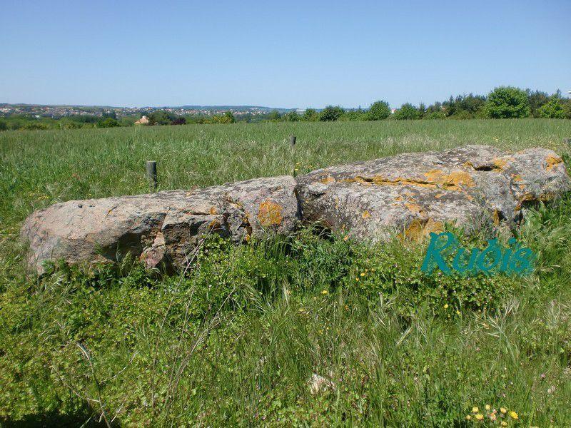 Dolmen de la Roche aux Oies ou de Vaucroc, Saint Georges les Baillargeaux