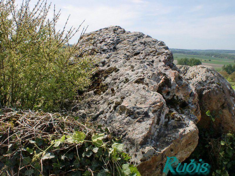 Dolmen des Pelyvert ou du Puy Livert, Sénillé