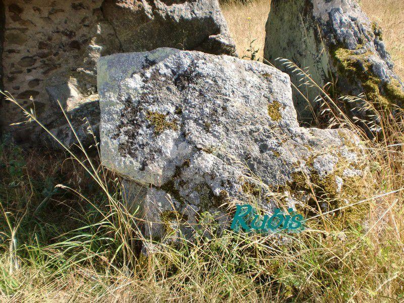 Dolmen de la Pierre Couverte de Mont-Benault ou du Loncheneau, Beaulieu sur Layon