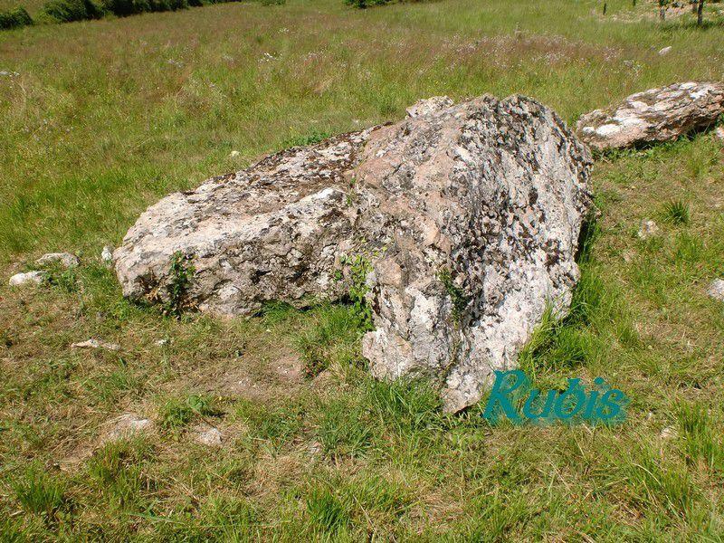 Dolmen de la Boussaye ou de la Fontaine de l'Etang ou de Trépézan, Archigny