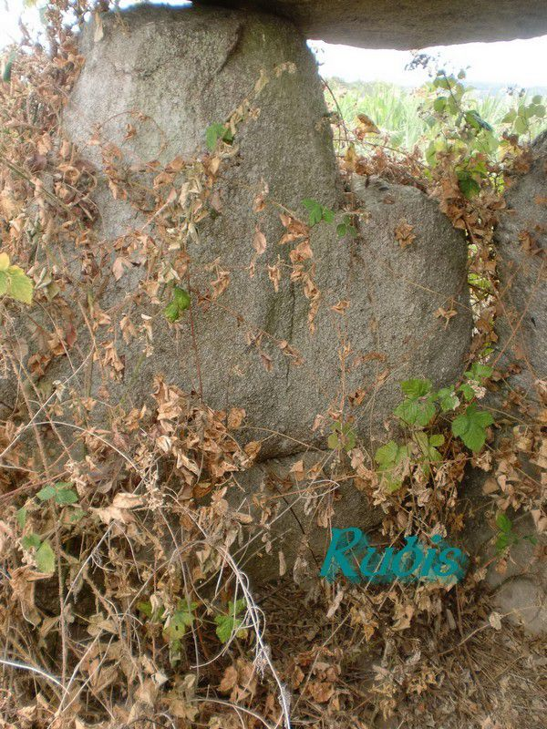 Dolmen de la Cabane de César ou de la Croix Blanche ou de la Pierre Soupèse ou de la Cabane des Fadas, Felletin