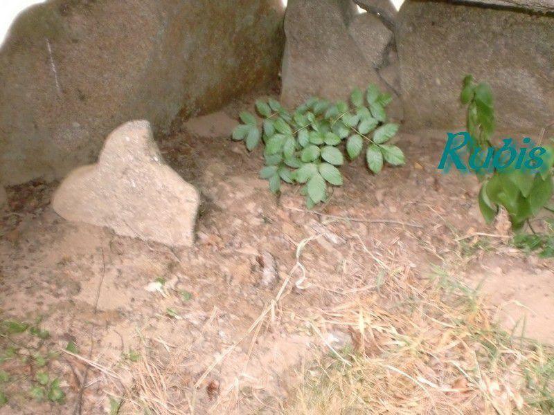 Dolmen des Fades ou de Montrabas, Saint Maurice près Crocq