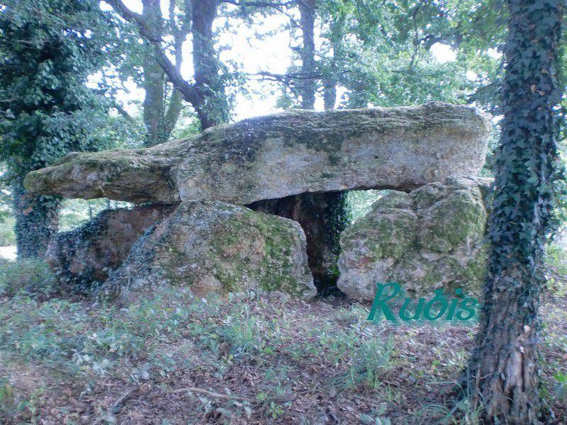 Dolmen de la Pierre Levée de Chiroux ou de Pierrefolle, Plaisance