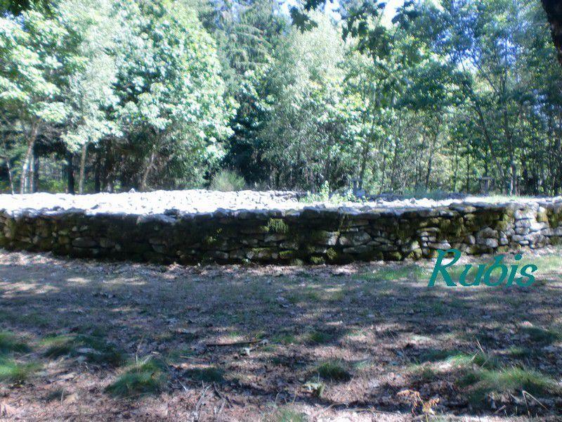 Tumulus A ou 1 de Plane ou du Puy de la Plane, La Nouaille
