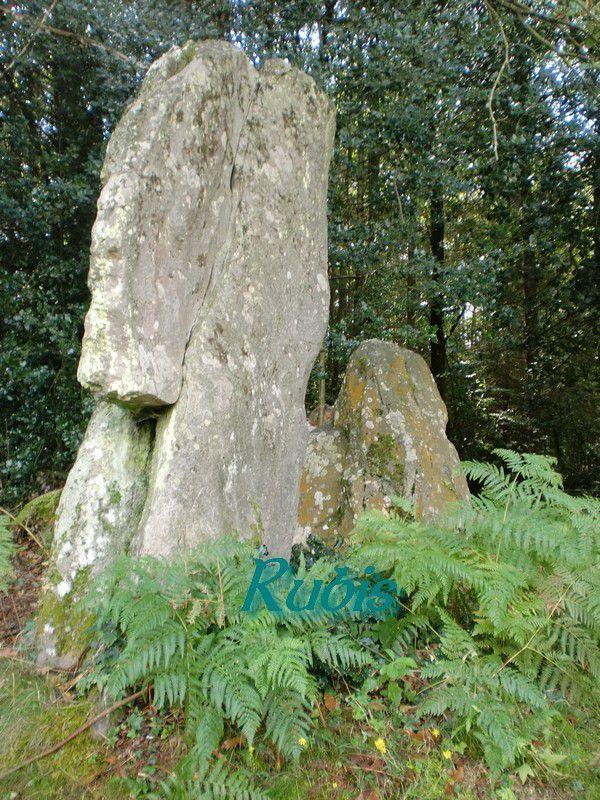 Menhir de la Pierre du Coq, Echemiré