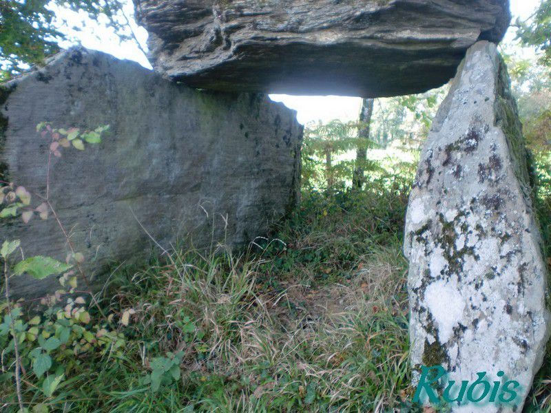 Dolmen de Tamanie ou de la Grosse Pierre, Oradour sur Vayres
