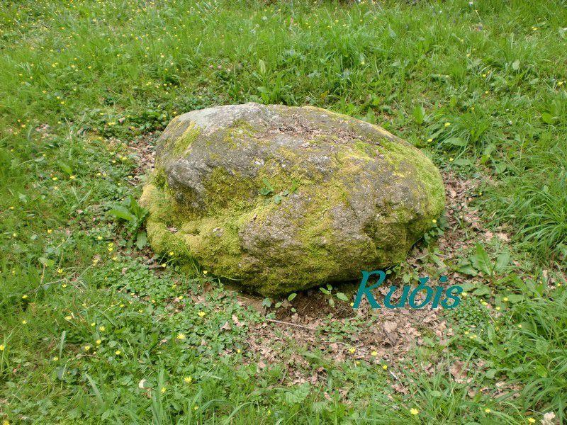 Coffre mégalithique du Bois Fourgon, Avrillé