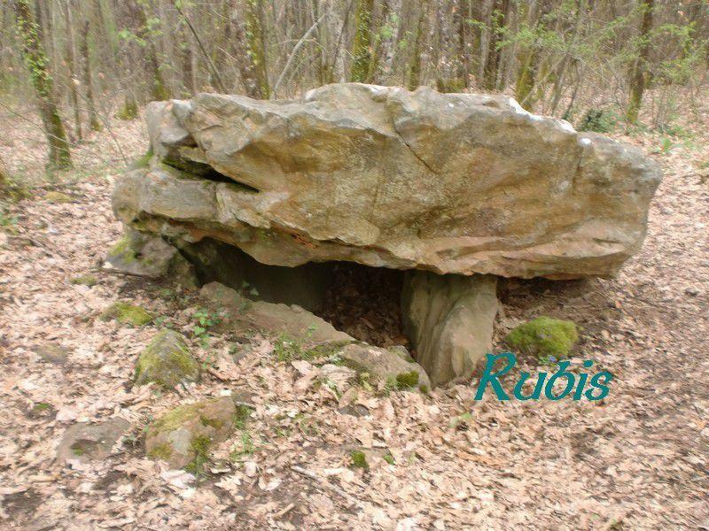 Dolmen de Bonarme ou de Lou ped de la Vacho, Saint Pardoux et Vielvic