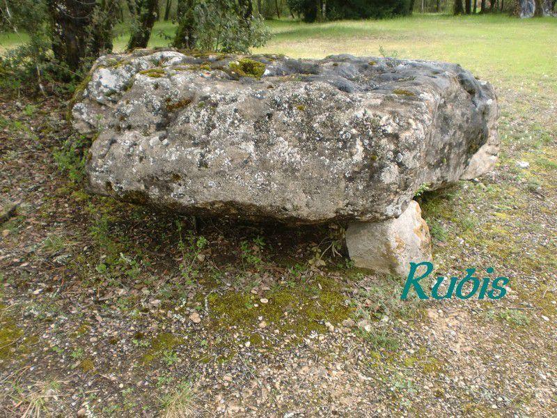 Dolmen de la Pierre du Diable ou de Peyrelevade, Vitrac