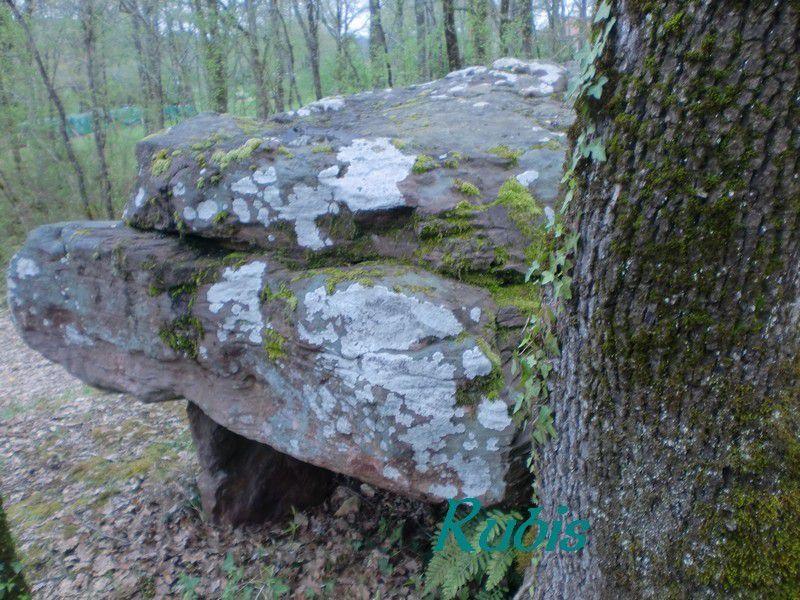 Dolmen de Cantegrel ou de Roc del Cayre ou de Pierre Rouille ou de Pierre Rouge ou de Clotes, Saint Chamassy