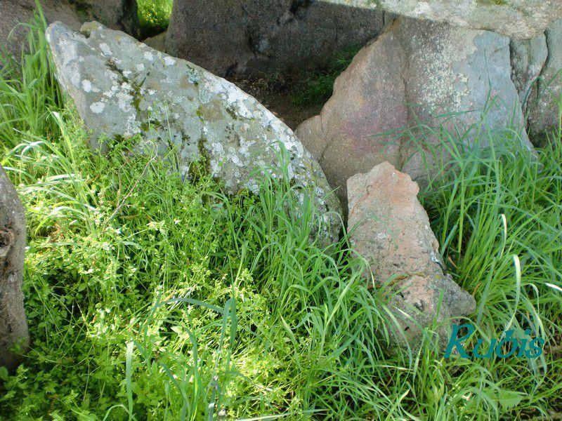 Dolmen de la Pierre à Marthe, Montchevrier