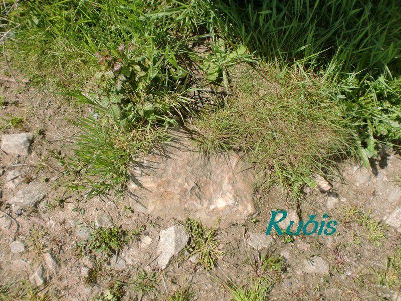 Dolmen de la Pierre-Là ou ou de la Pierre à la Marte, Saint Plantaire