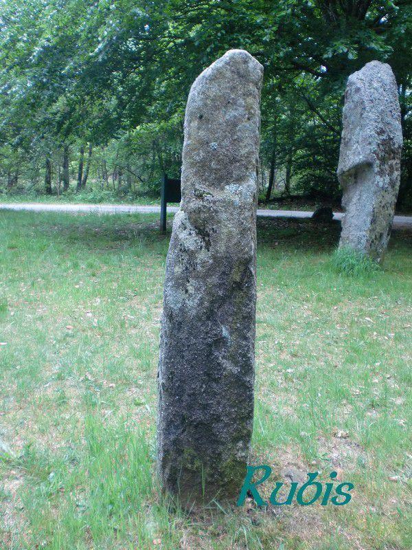 Pierres de la Plaine des Filles ou Pierres Blanches, Saint Martial le Vieux/Lamazière Haute