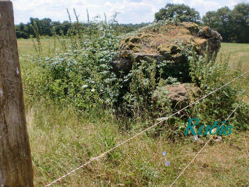 Dolmen des Fromenteaux, Chaillac