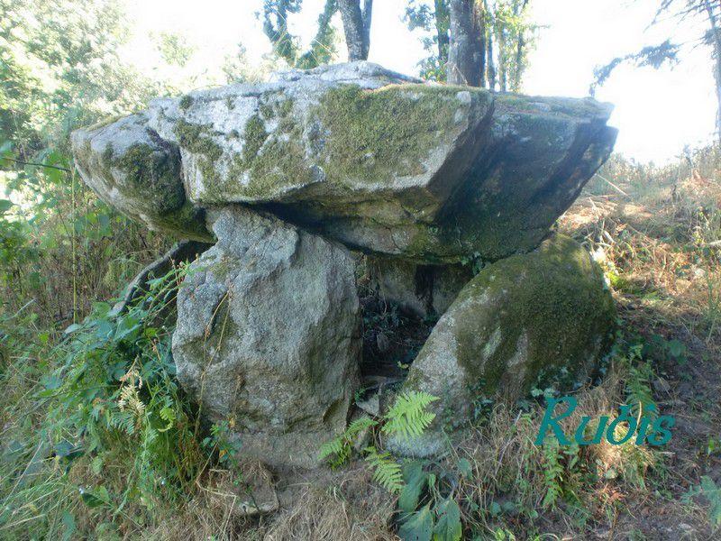Dolmen du Peyrat ou du Payrat, Janaillat