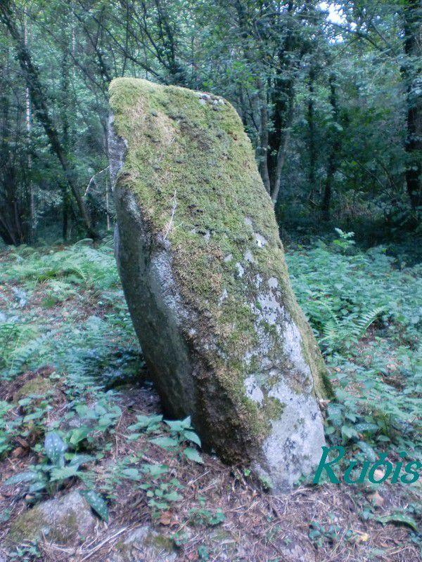 Menhir de Pierre Longue, Champagnat