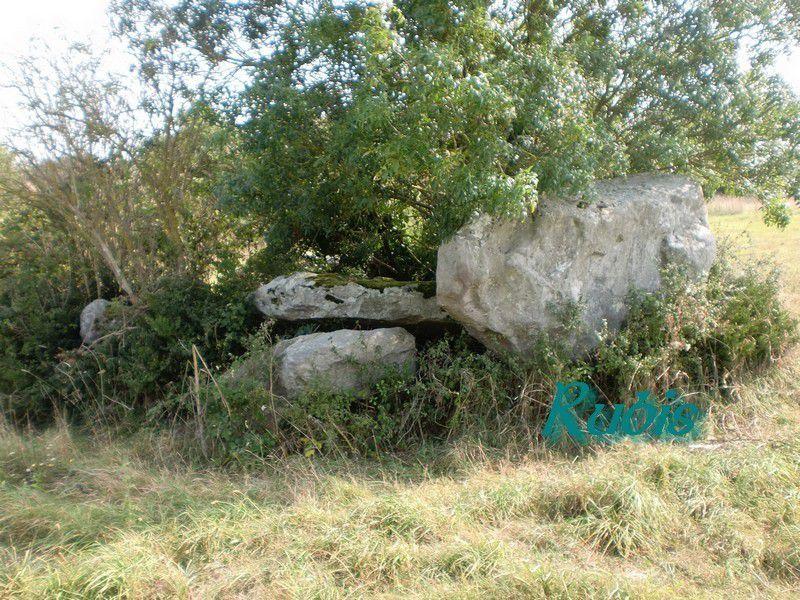 Dolmen de la Salle des Fées, Sainte Pazanne