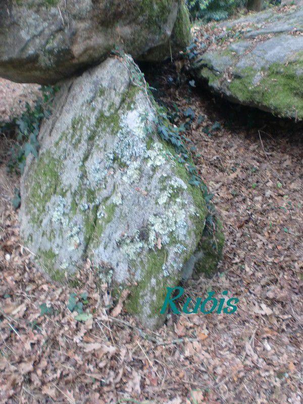 Allée couverte de la Mariandais ou des Rochettes, Crossac