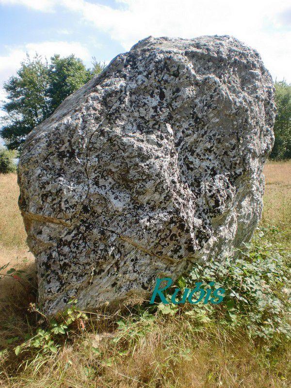 Menhir de la Pierre Folle ou Gravelle de Gargantua, Plessé