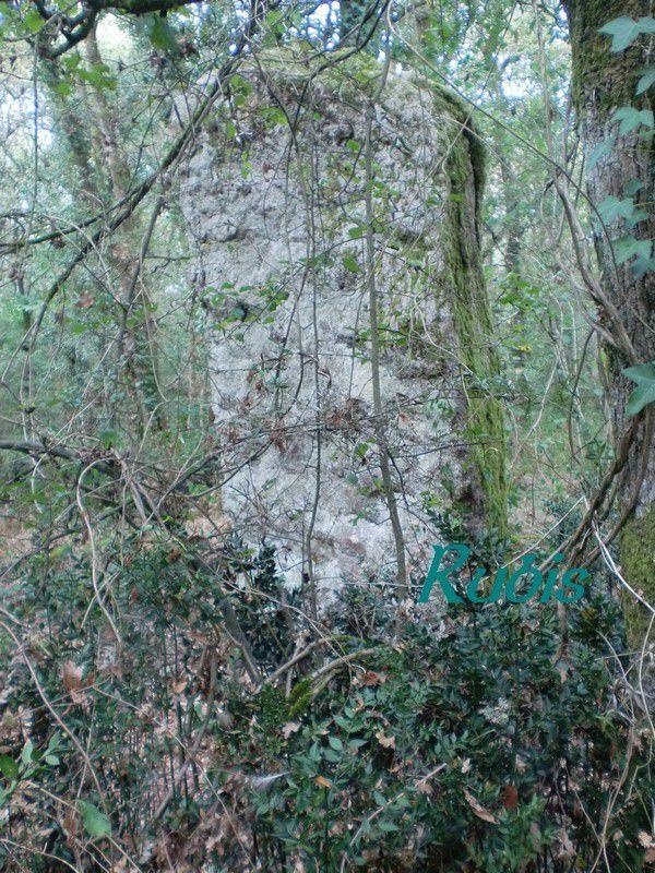 Menhir du Bois-Hoël ou de Pierre Levée, Crossac