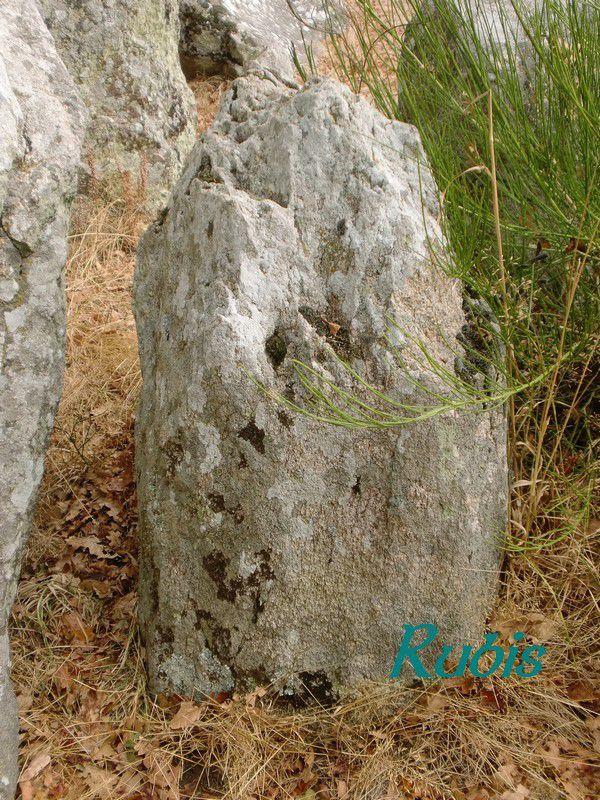 Allée couverte de la Barbière, Crossac (44)