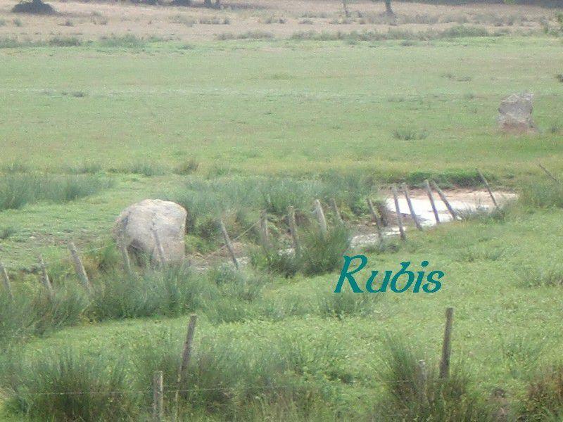 Menhir A du Hêlé ou du Morandais, Donges