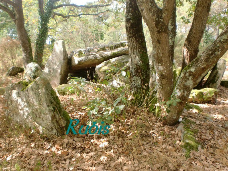 Dolmen de Riholo, Herbignac
