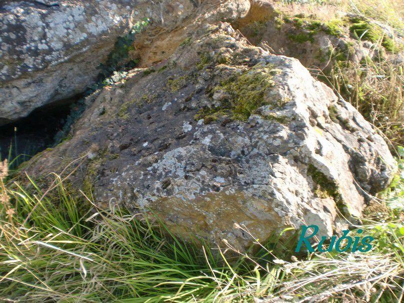 Dolmen de Palus ou de Margot, Tocane-saint-Apre