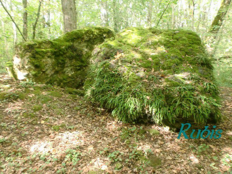 Dolmen de Peyre-Levade ou de Pierre Levée, Beauregard-et-Bassac