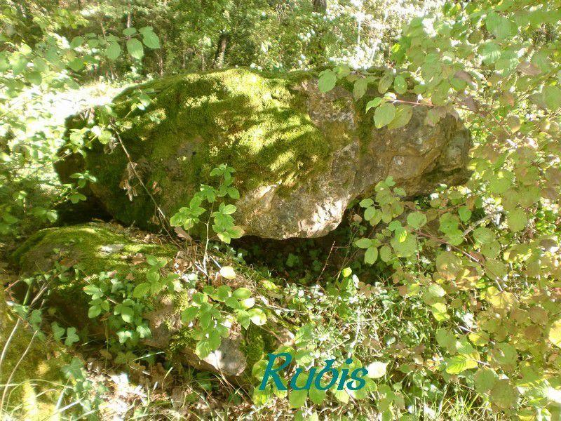 Dolmen de la Vaurélie, Tocane-saint-Apre