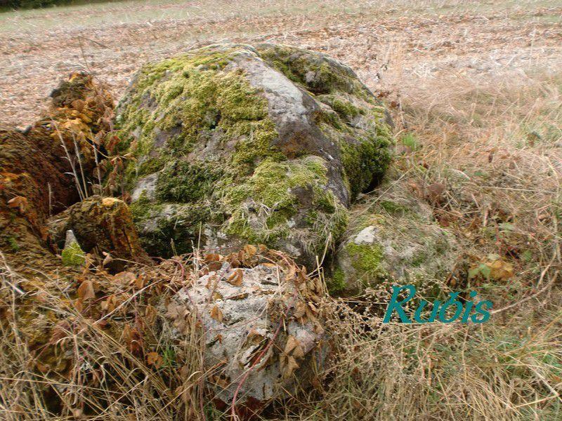 Mégalithe de Peyre-Brune ou de Peyrebrune ou de Pierre-Brune, Sainte-Orse