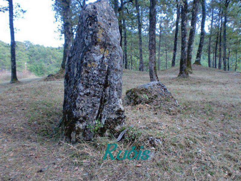 Menhir de Clotte, Salles-de-Castillon