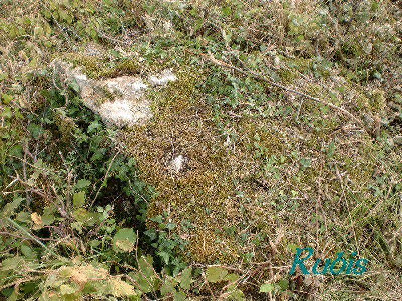 Dolmen de Pey-Landry ou de Puy Landy ou de Pey Landry, Salles-de-Castillon