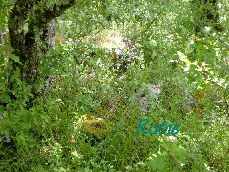 Dolmen du Roc de la Chèvre, Plaisance