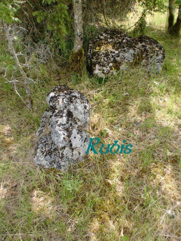 Dolmen de la Peyrelebade de la Robertie, Faux