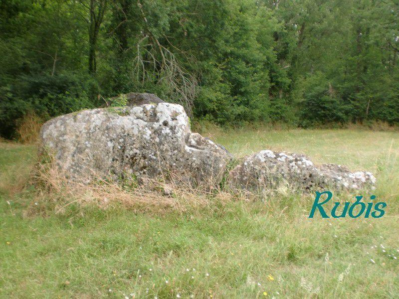 Dolmen de la Pierre Levée de Maisonneuve, La Roche Rigault