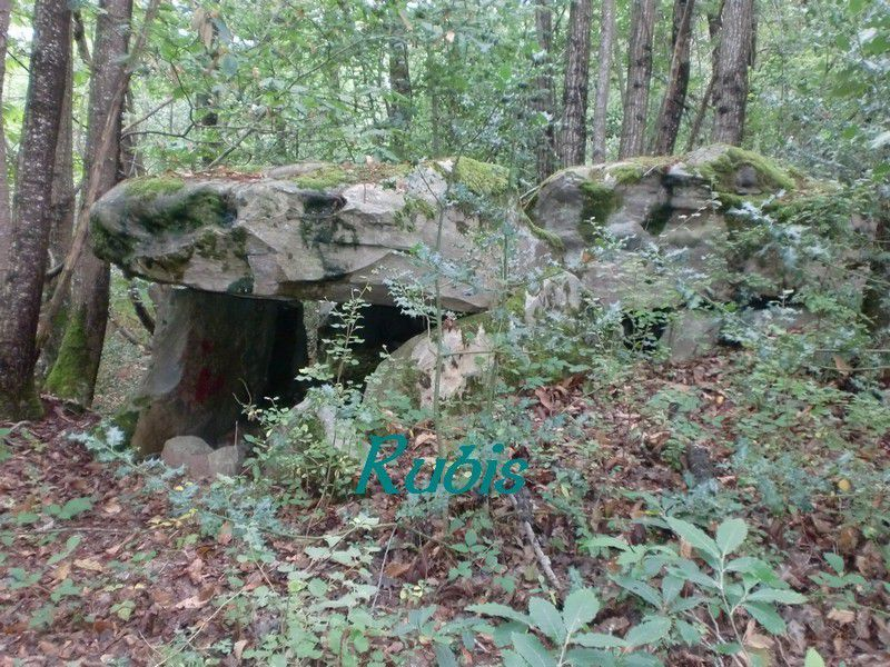 Dolmen du Ruisseau de l'Enfer ou Pierre Couverte de Chênehutte ou de Pompierre ou du Diable, Chênehutte-Trèves-Cunault (Gennes-Val-de-Loire)