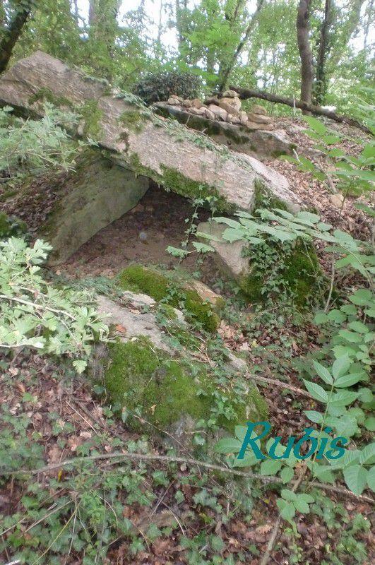 Dolmen de la Pierre Couverte du Clos Moreau, Rou-Marson