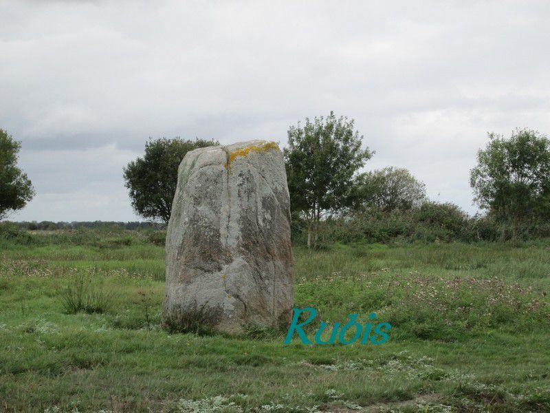 Menhir de la Pierre Blanche, Saint Malo de Guersac
