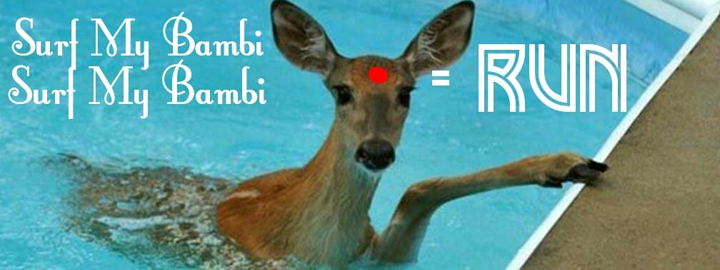 Surf My Bambi Surf My Bambi - Run