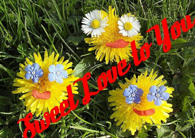 Funny Flowers and make Sweet Love to You