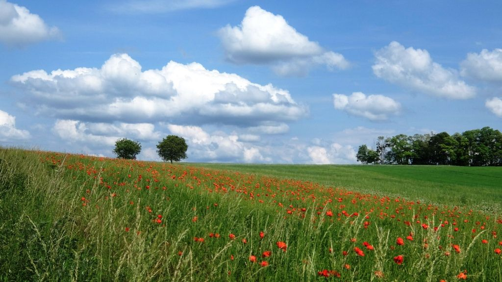 PARMONZEPARVO ou un voyage à vélo à la decouverte des paysages de la France version grand est - Partie 1 : Les paysages
