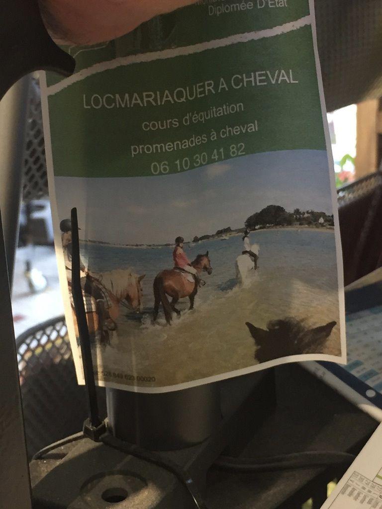 Sortie poneys sur Locmariaquer
