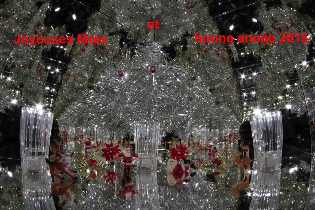Joyeuses fêtes et bonne et heureuse année 2015