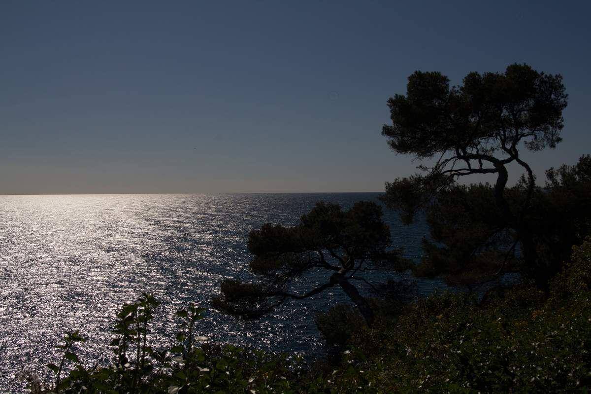 Balade en bord de mer à Menton