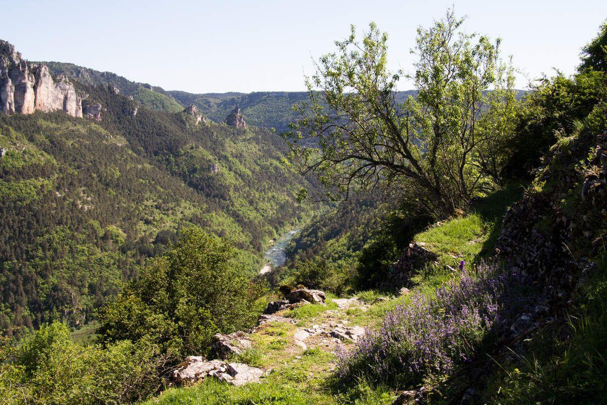Gorges du Tarn - de Vors à Eglazine